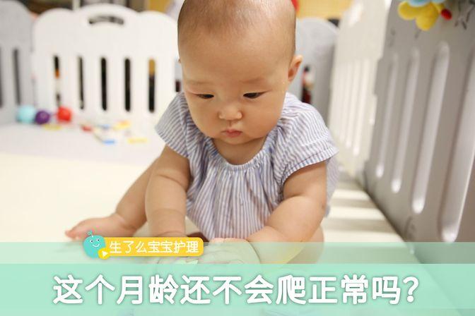 爬行能让宝宝探索新世界,这个月龄的宝宝还不会爬,正常吗?
