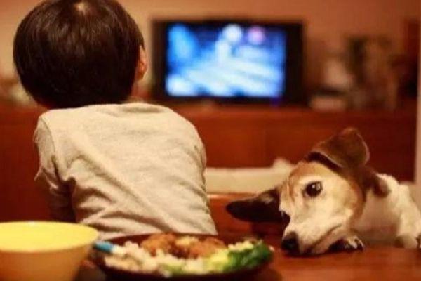 到底该不该让三岁的孩子看电视?心理学家的答案和你想的不一样