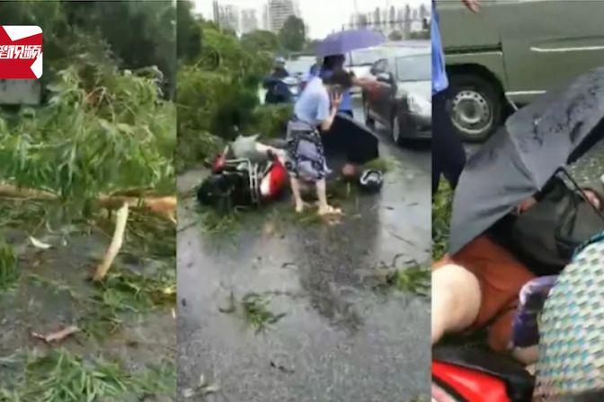 """台风""""韦帕""""来袭:广西一女子骑车被大树砸中,当场倒地不起"""