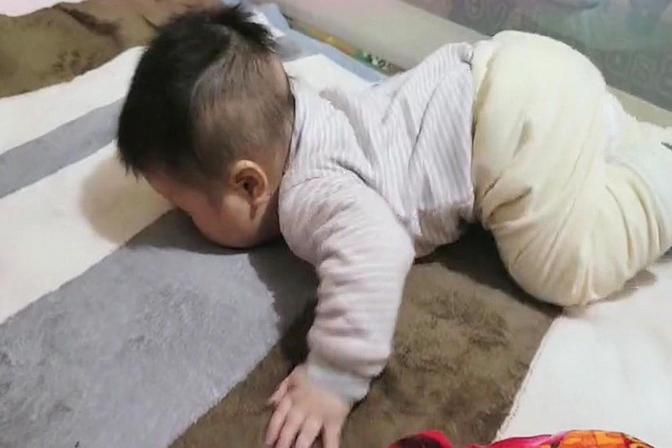 七个月大宝宝趴着时总是撅屁股,这是不是要学会爬了?