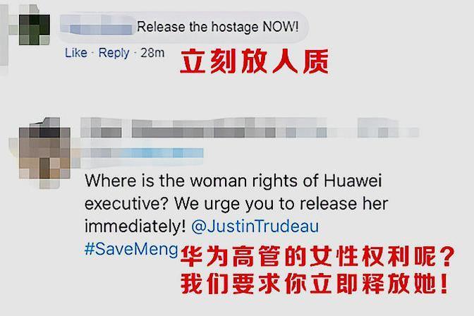 放人!华春莹回应孟晚舟事件后 外国网友集体力挺中国