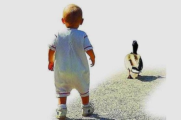 """宝宝""""八字脚""""走路像鸭子,家长们不用过分紧张,要看具体情况!"""