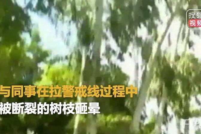 福州85后社区书记台风天巡逻 被树木断枝砸伤