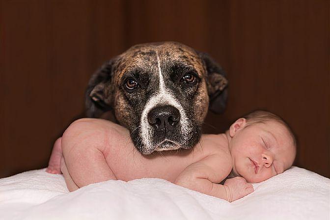 新生儿总喜欢歪着脖子睡觉?原因一般有3个,2个方法纠正错不了