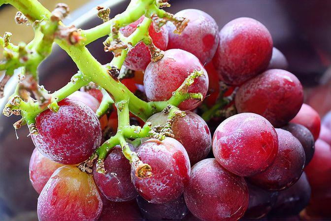 冬天适合宝宝吃的3种水果,润肺生津,促进肠胃消化